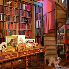 Decorating Ideas Every Bookworm Will Love