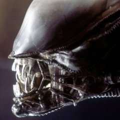 Why 'Alien: Covenant' is the Best in Franchise Since 'Aliens'