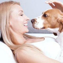 Why Your Dog Really Loves It When You Smile